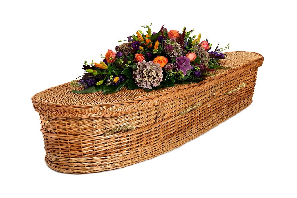 Willow Curved Coffin