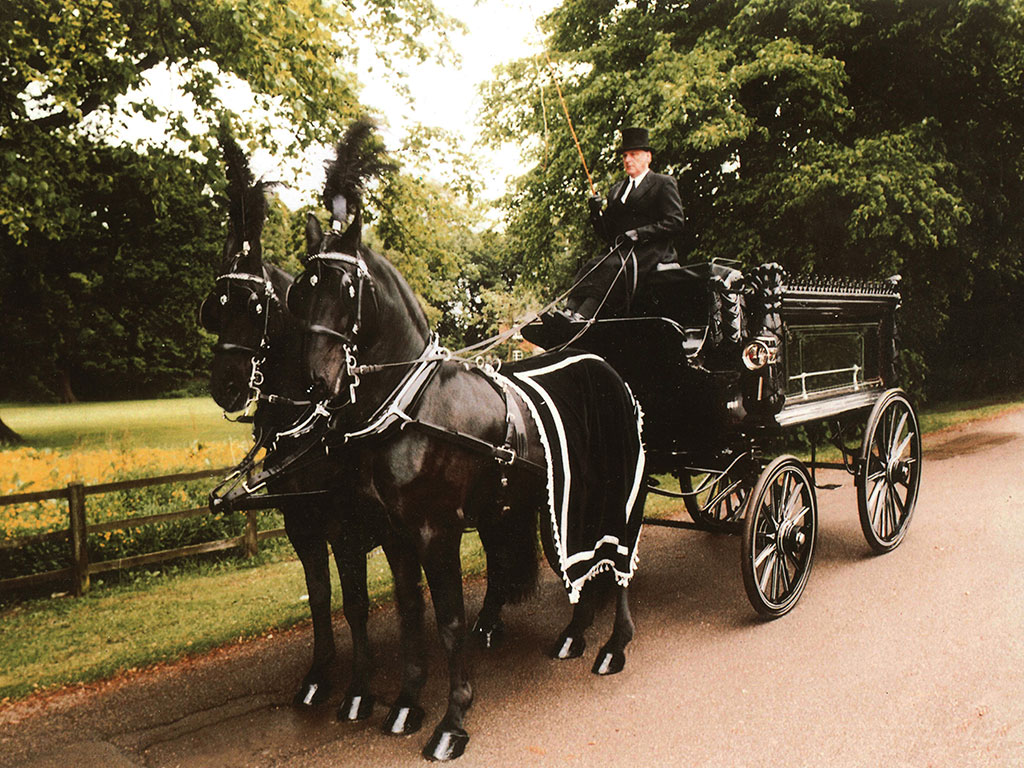 Traditional Horse and Carriage